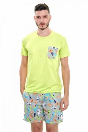 pijama de dinossauros curto masculino verao 5